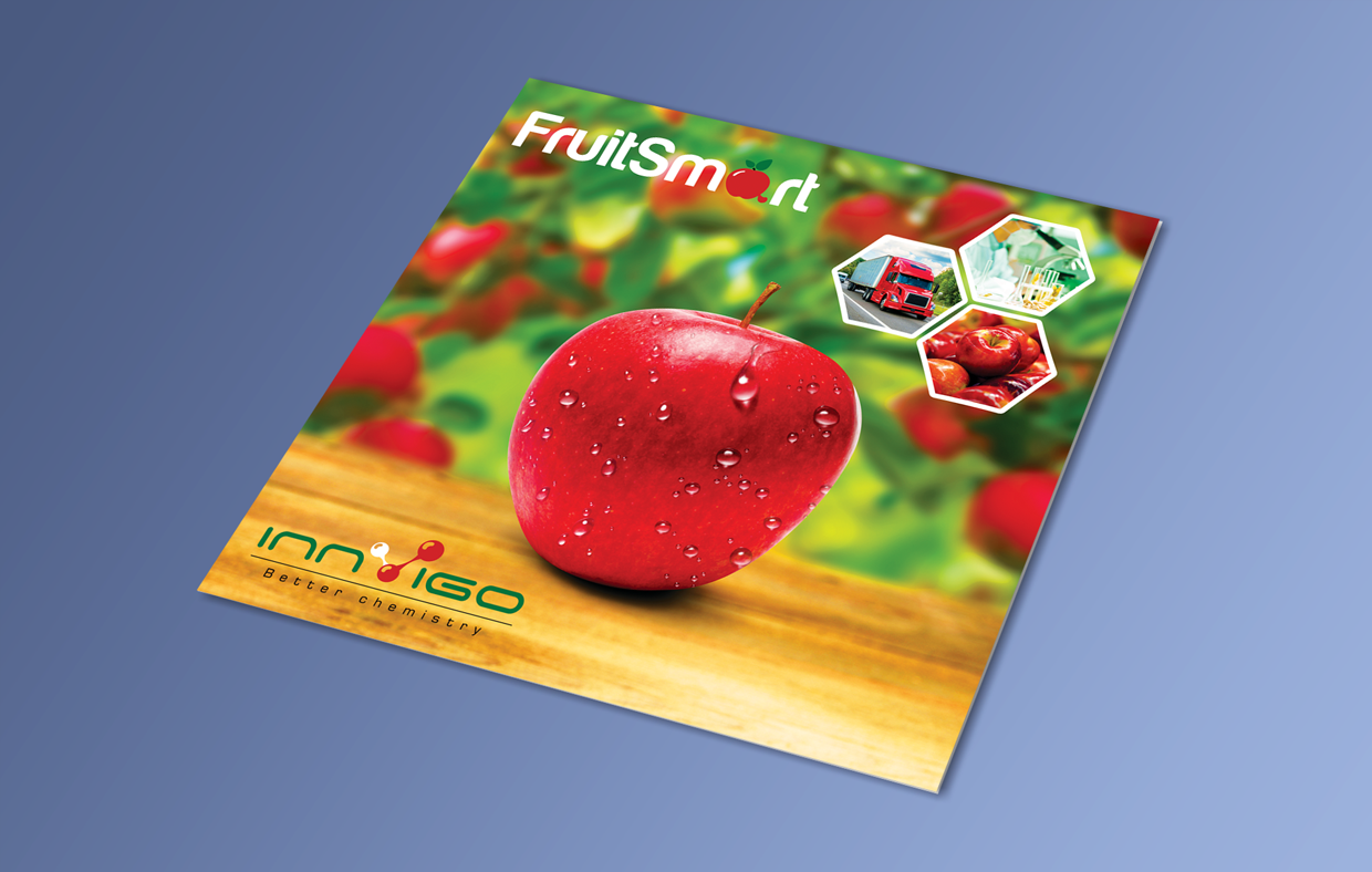 Innvigo Broszura Fruit Smart